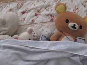 ぬいぐるみ寝てます②
