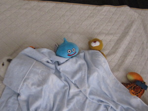 ぬいぐるみ寝かしつけ⑦